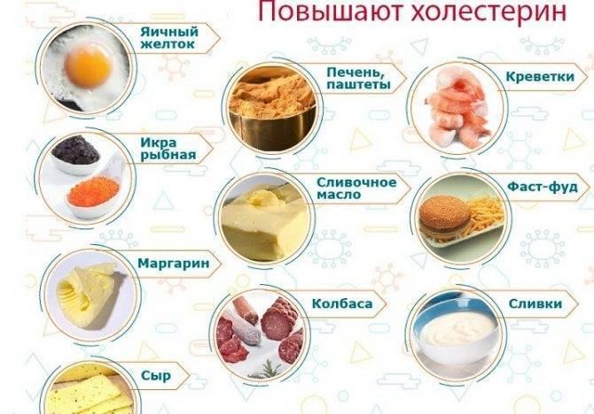 Как при повышенном холестерине выбрать безвредный сыр