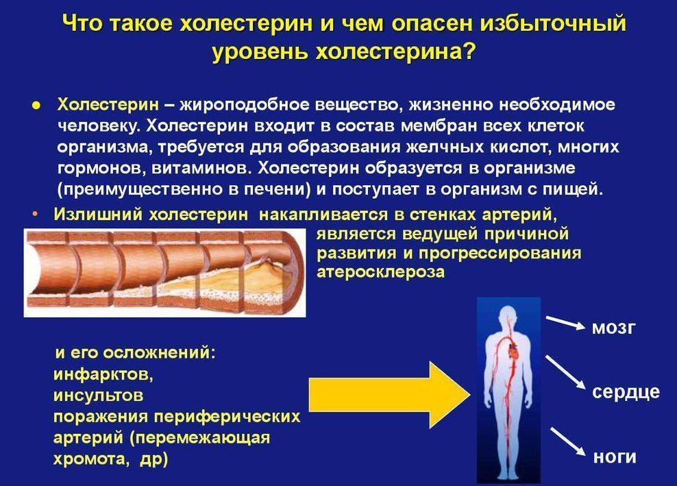 Повышенный холестерин в крови: что это значит, причины, лечение у женщин, мужчин