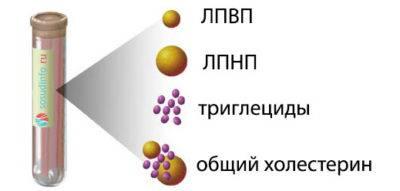 Holesterin-v-slivochnom-masle - стр. 1 - запись пользователя светлана (o-ova) в сообществе здоровье будущей мамы и малыша в категории анализы, инфекции - babyblog.ru