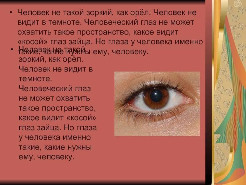 Сколько цветов может видеть человеческий глаз
