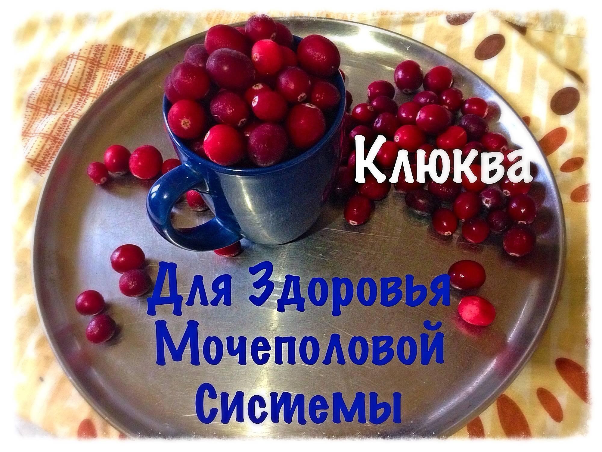 Рецепты из клюквы при цистите