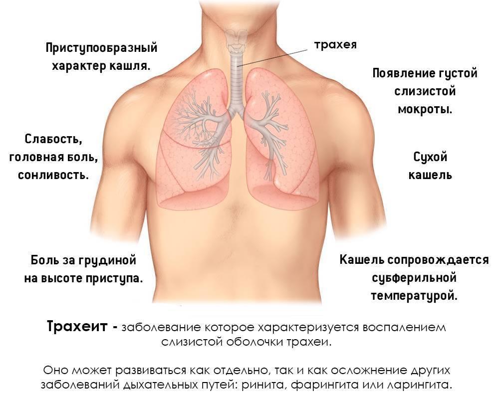 боль в груди сухой кашель