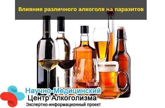 Глисты и алкоголь: убивает ли алкоголь (спирт, водка) паразитов в организме человека?
