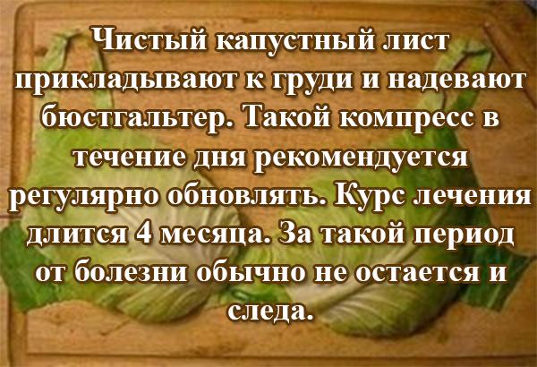 капустные листы при мастопатии