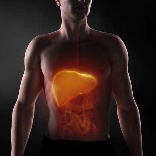 Диета при лекарственном гепатите печени | советы доктора