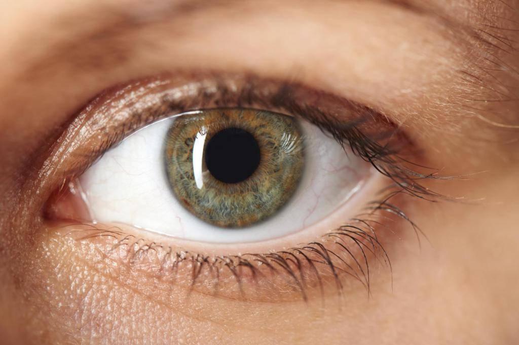 какое бывает зрение у человека