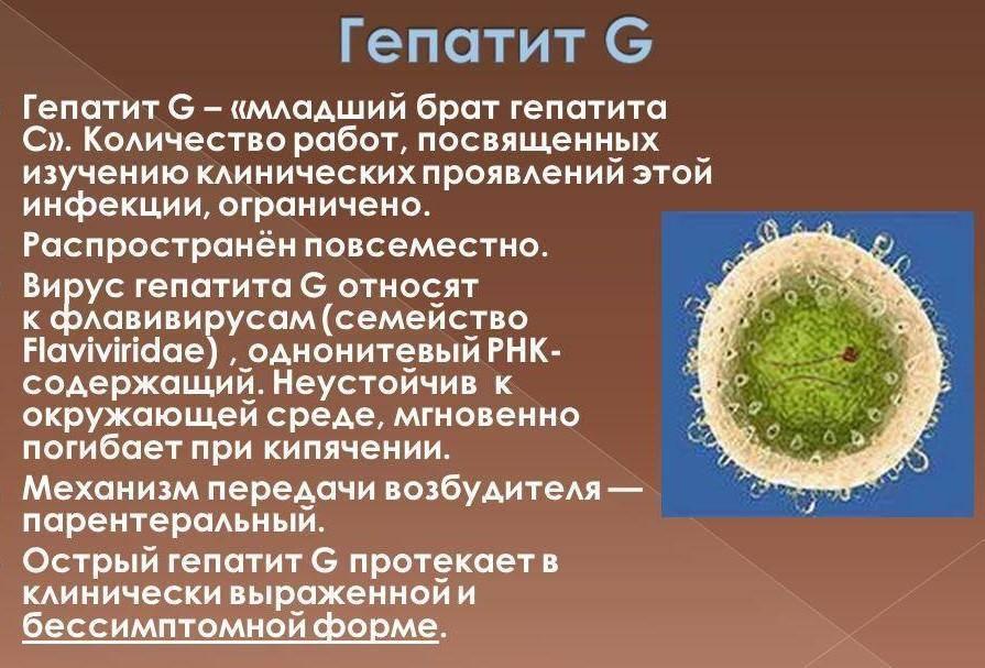 вирус гепатита g