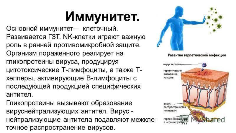 витамины от герпеса
