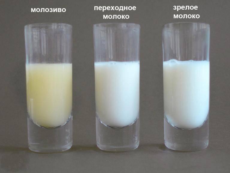 Молоко попадает в нос ((