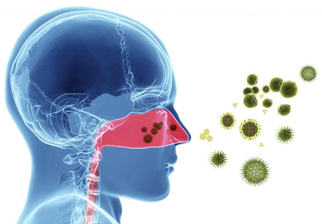 Бактериальный ринит симптомы и лечение у взрослых
