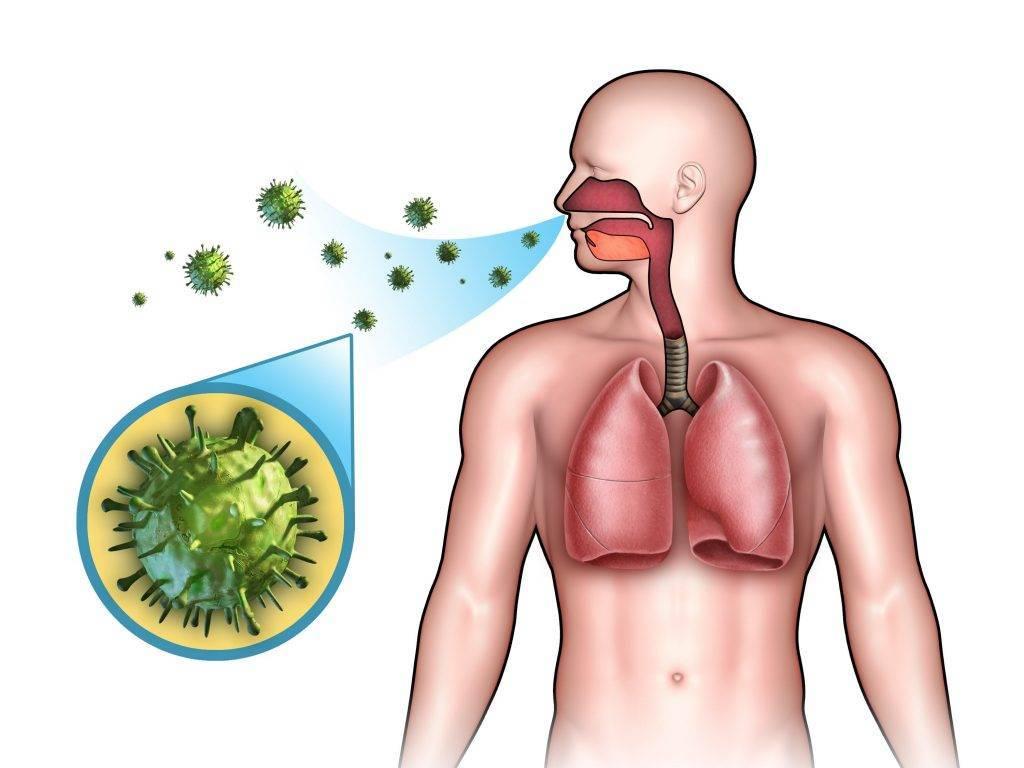 Профилактика и лечение бактериального насморка
