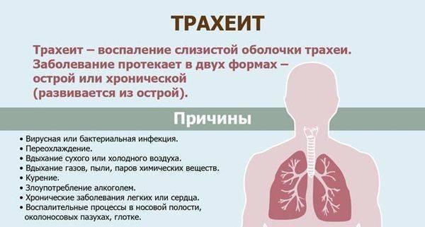 трахеит лечение комаровский