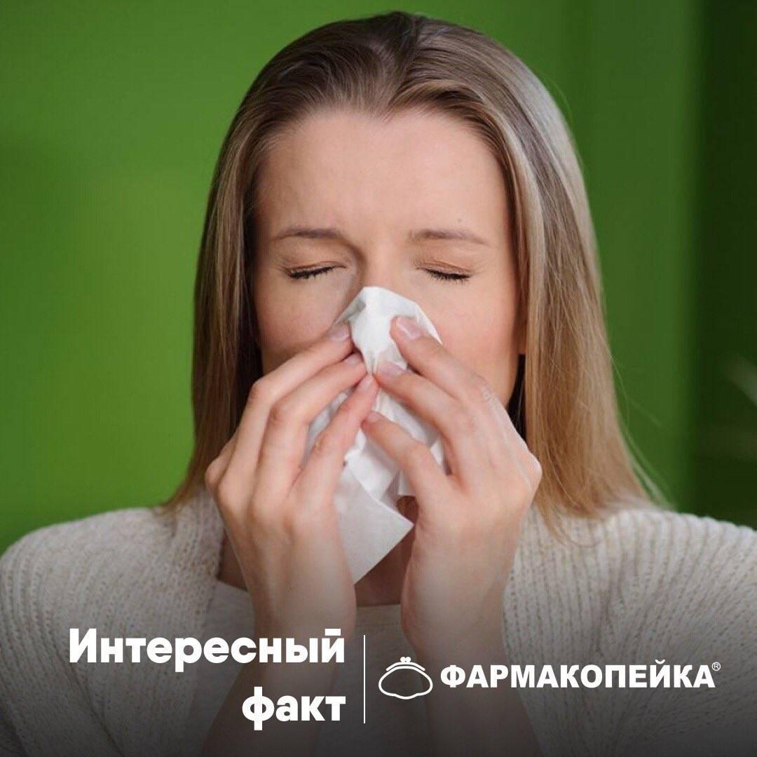 заложены пазухи носа