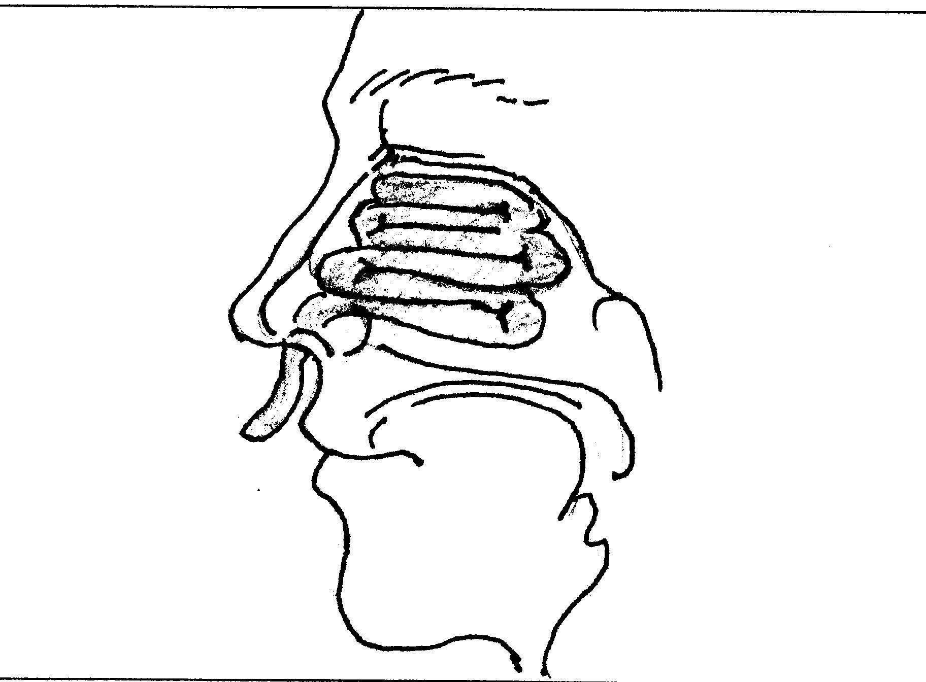 тампоны для носа