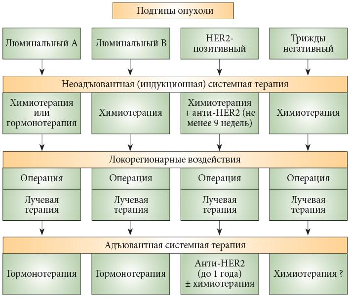 Люминальный тип рака молочной железы. люминальный рак молочной железы
