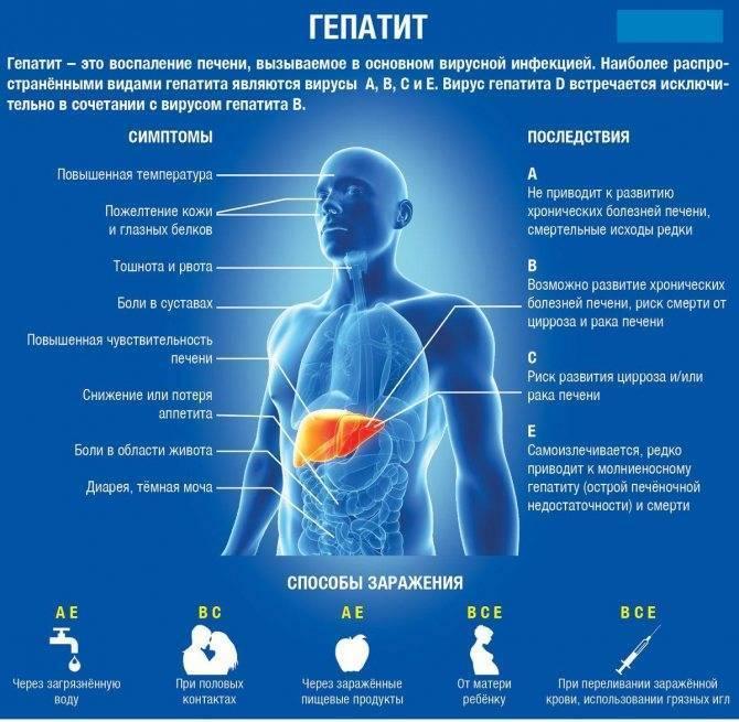 Может ли повышаться температура при гепатите?
