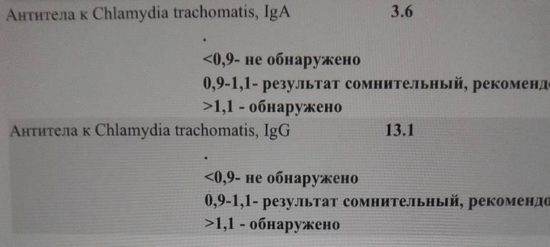 Антитела к хламидиям
