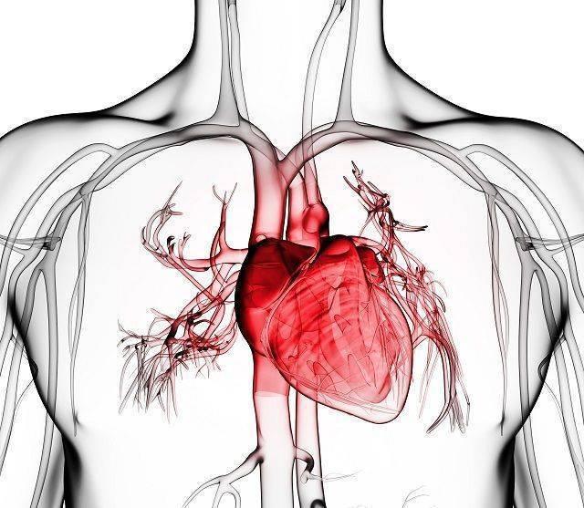 Симптомы и лечение кардиального цирроза печени