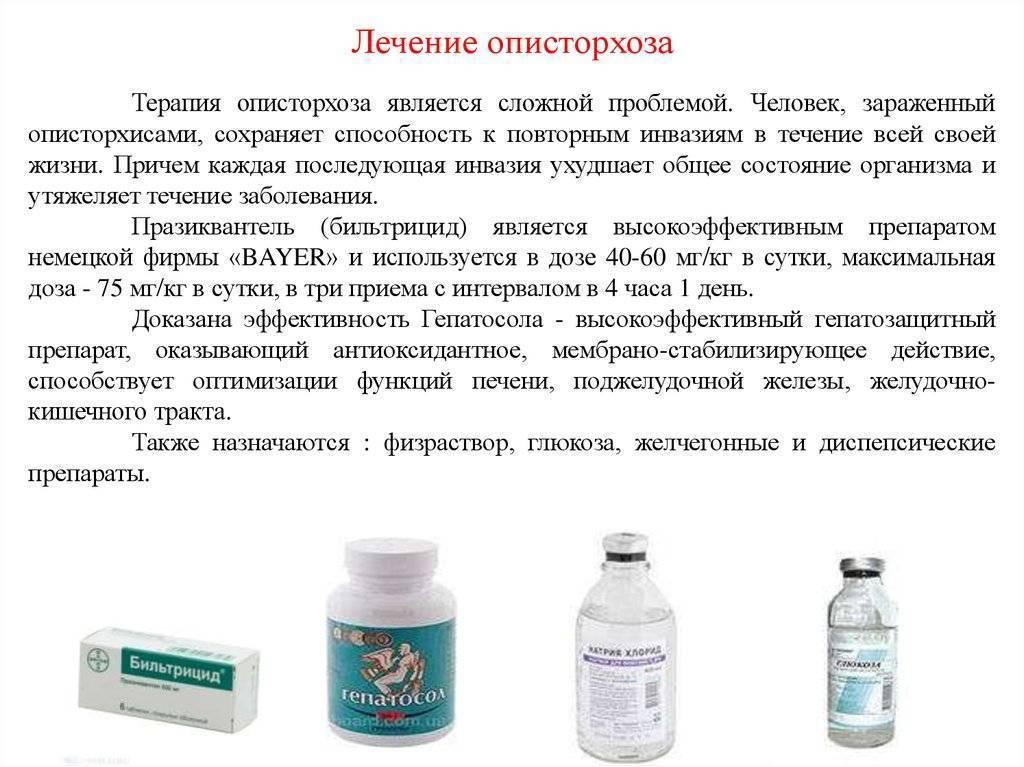 Описторхоз: лечение. описторхоз: лечение народными средствами