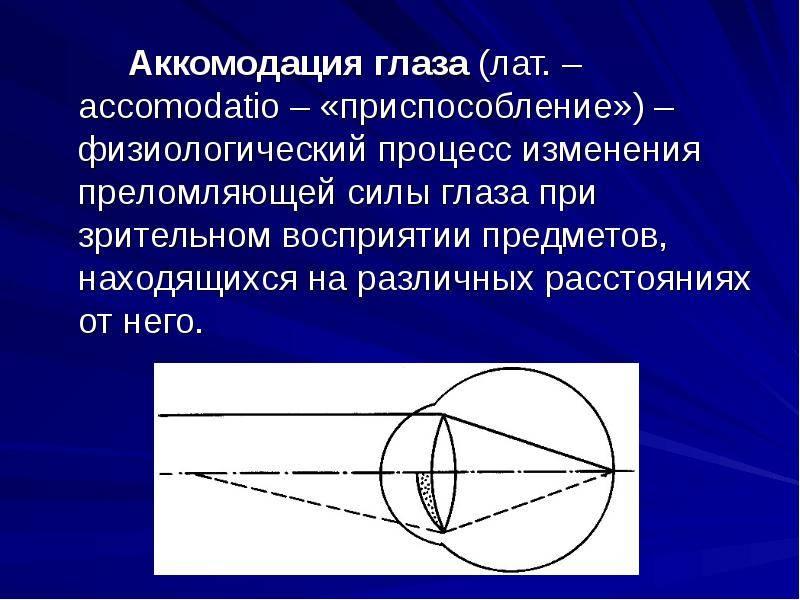 Аккомодация (биология) — википедия с видео // wiki 2