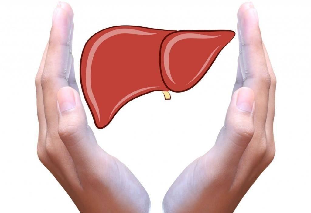Заболевания печени. симптомы, диета, питание и лечение заболеваний печени.