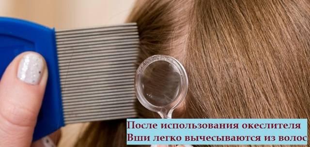 можно ли краской для волос вывести вшей и гнид