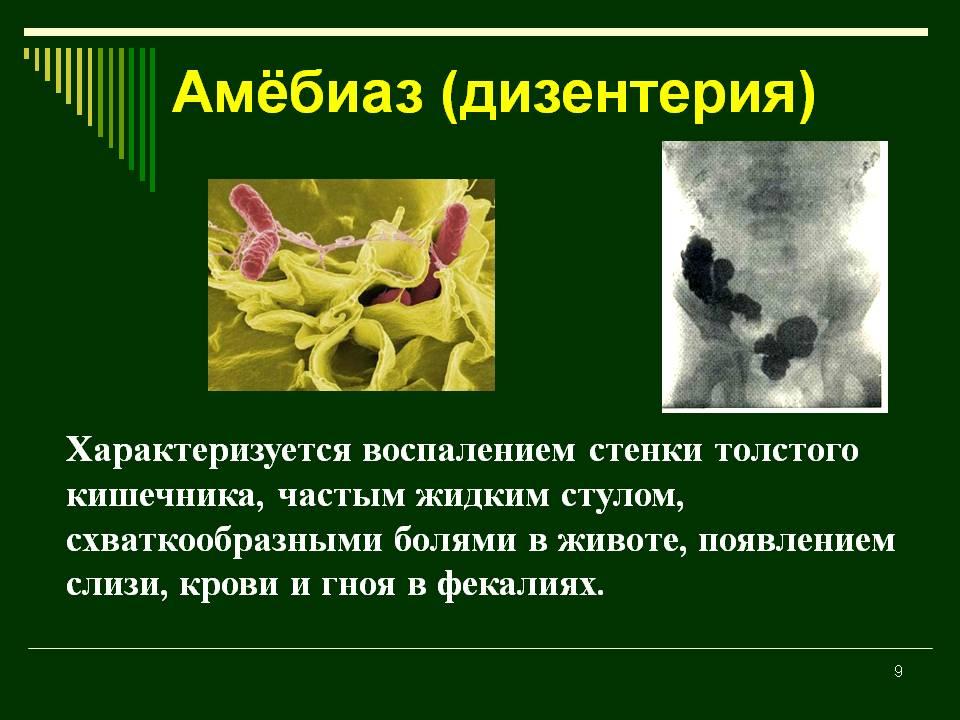 Амебиаз, амебная дизентерия – что это такое? внекишечный, кишечный амебиаз – симптомы, лечение, клинические рекомендации