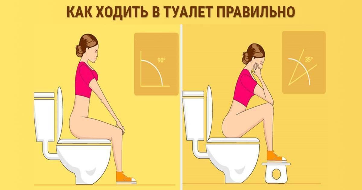 Как безболезненно сходить в туалет при геморрое по-большому