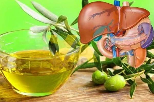 Оливковое масло: польза и вред для организма