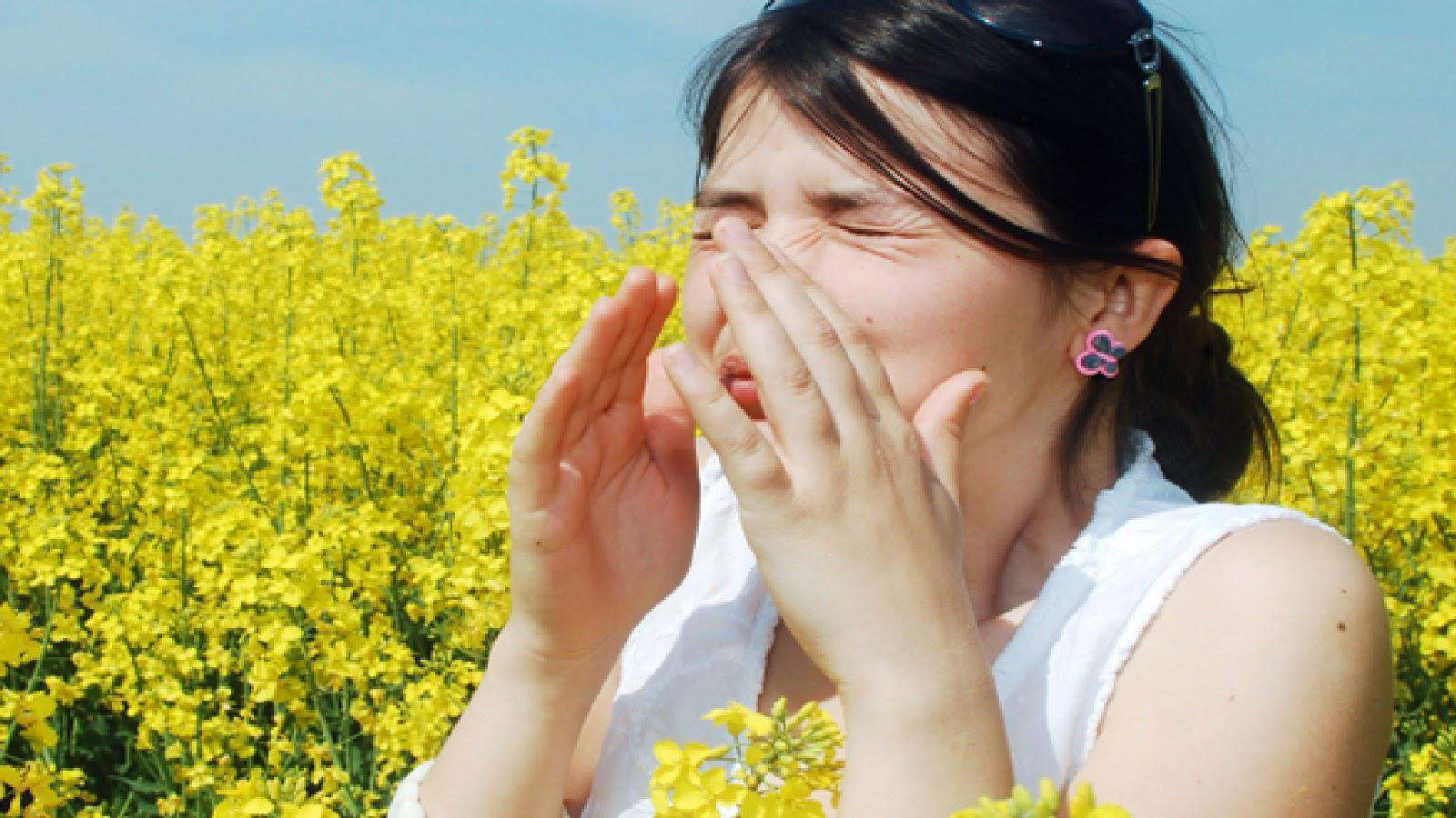 Чем лечить аллергический ринит у взрослых народными средствами