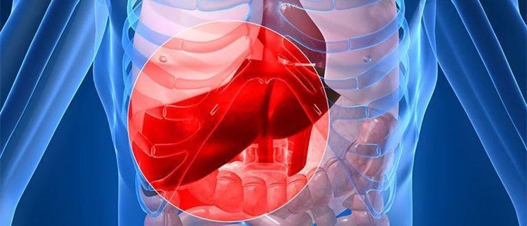 Травма печени: симптомы, лечение, разновидности