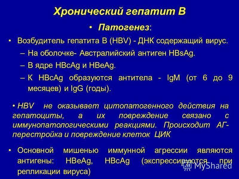 гепатит в носительство