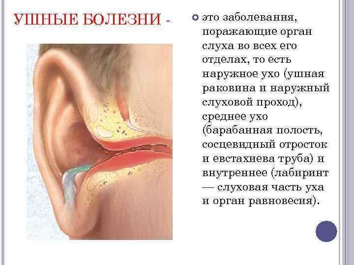 Заболевания внутреннего уха