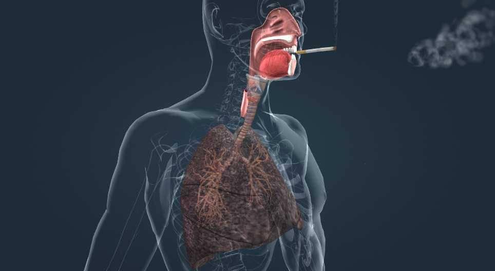 Какими таблетками и средствами бороться с кашлем у курящих?