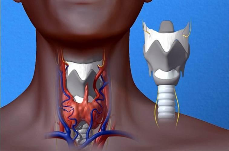 заболевания горла рак горла