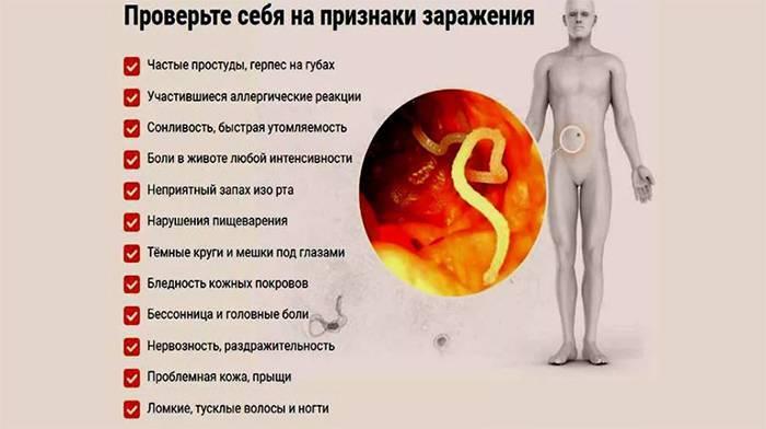 Глисты у человека – симптомы, диагностика, лечение