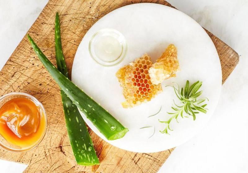 Лечение кашля с помощью меда и алоэ
