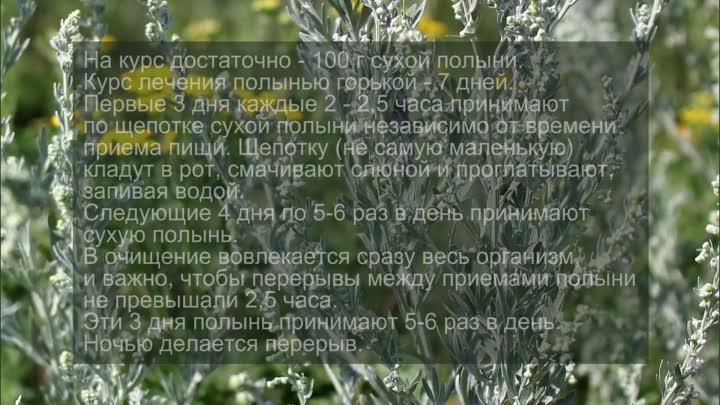 травы против рака молочной железы