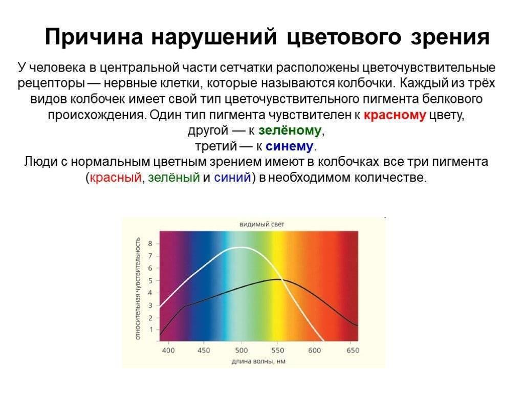 Проверка зрения на цветовосприятие для водителей: таблица рабкина, тест, цветоощущение, с ответами