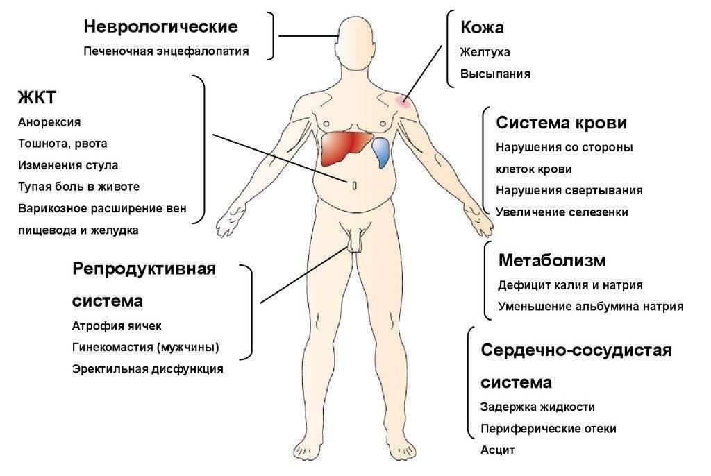 первые признаки гепатита с у мужчин
