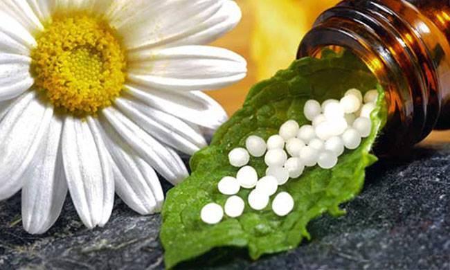 Гомеопатия при псориазе: помогает или нет?