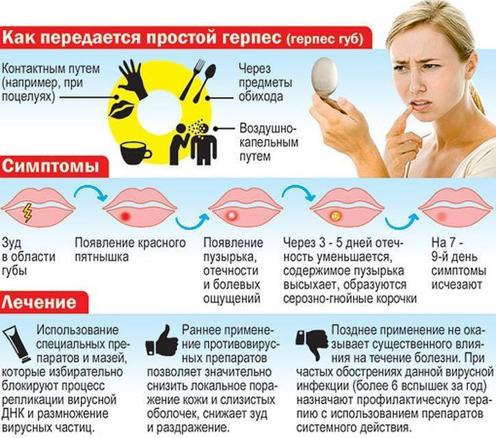 диета при герпесе на губах