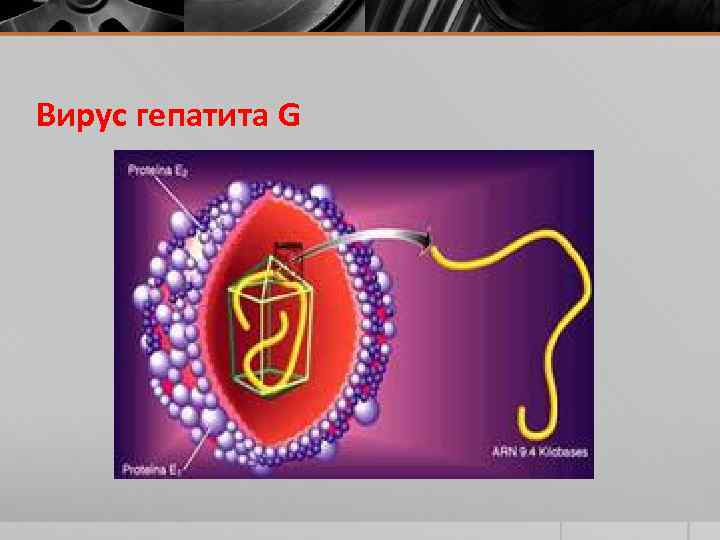 Гепатит д. причины, способы инфицирования, диагностика и лечение заболевания. :: polismed.com