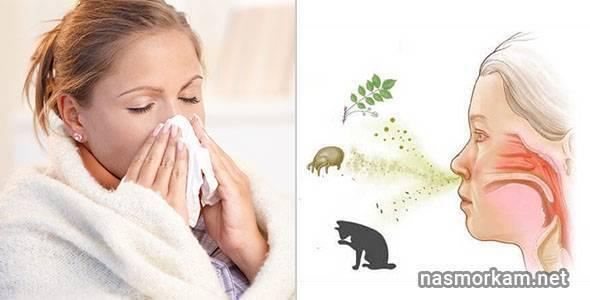 Как вылечить аллергический ринит при беременности