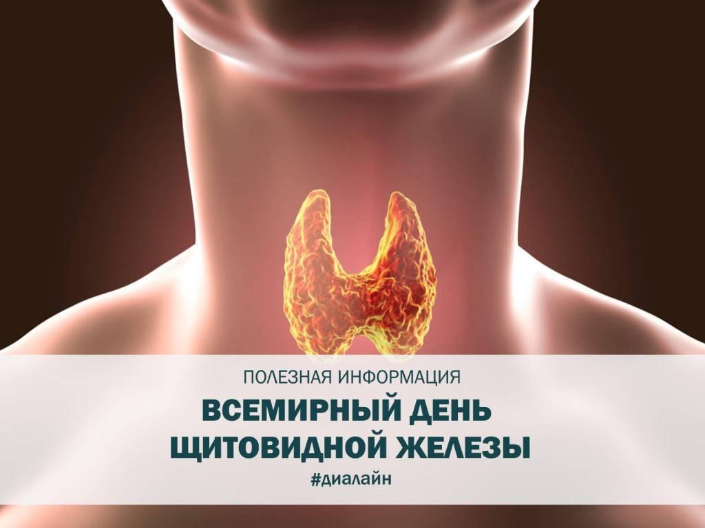 Как быстро и эффективно улучшить работу щитовидной железы проверенными методиками