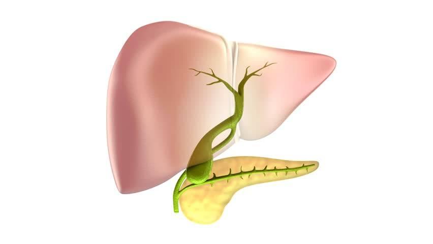 Диета при болезнях желчного пузыря и желчевыводящих путей.
