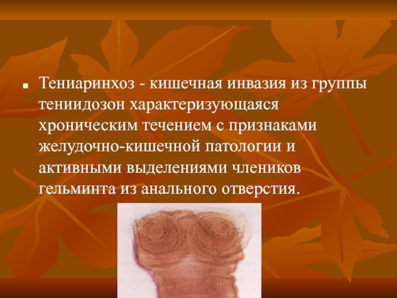 Тениаринхоз – симптомы, описание, лечение и профилактика. тениаринхоз: возбудитель заболевания, способы передачи, диагностика и лечение