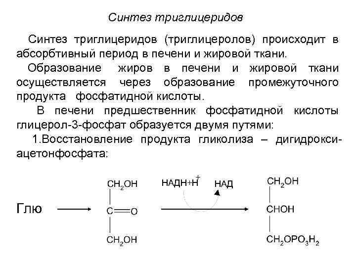 - дефекты переваривания - биохимия