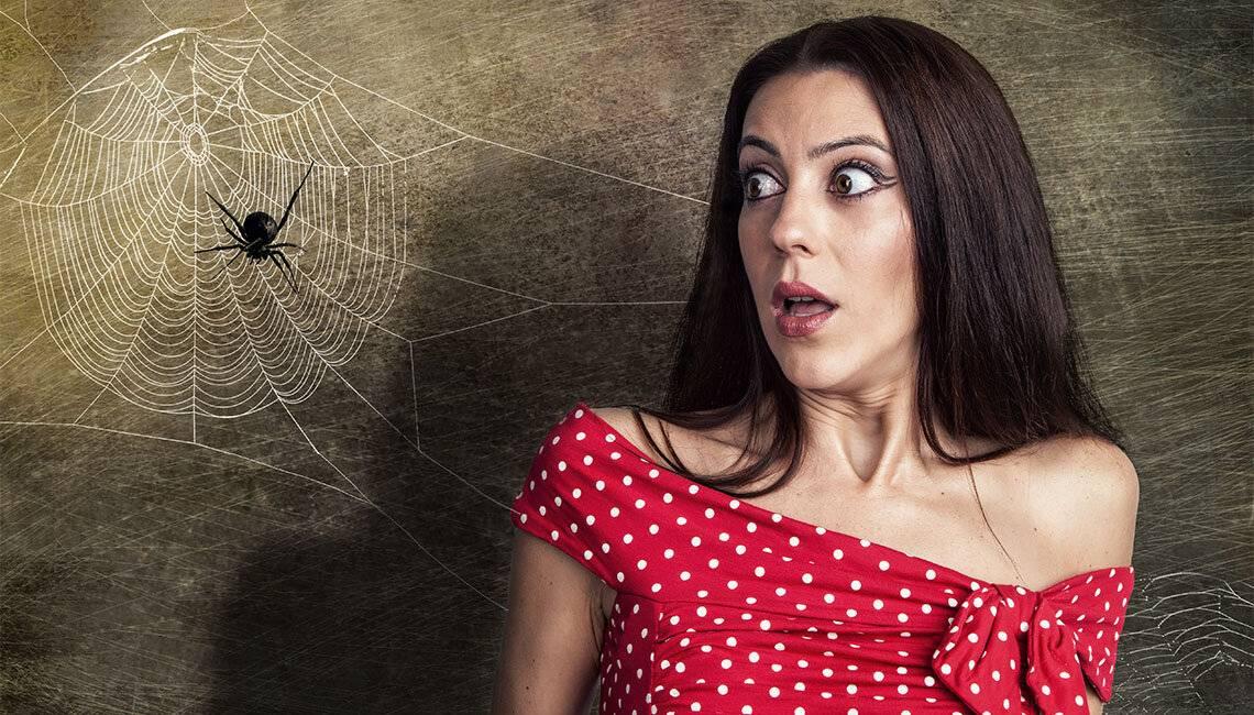 Арахнофобия: преодолеваем боязнь пауков и паукообразных