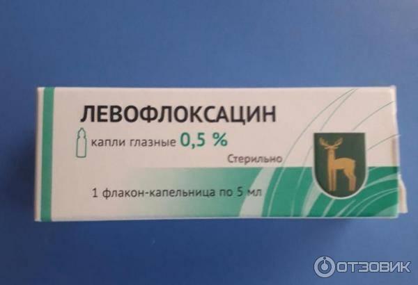 левофлоксацин глазные капли инструкция по применению